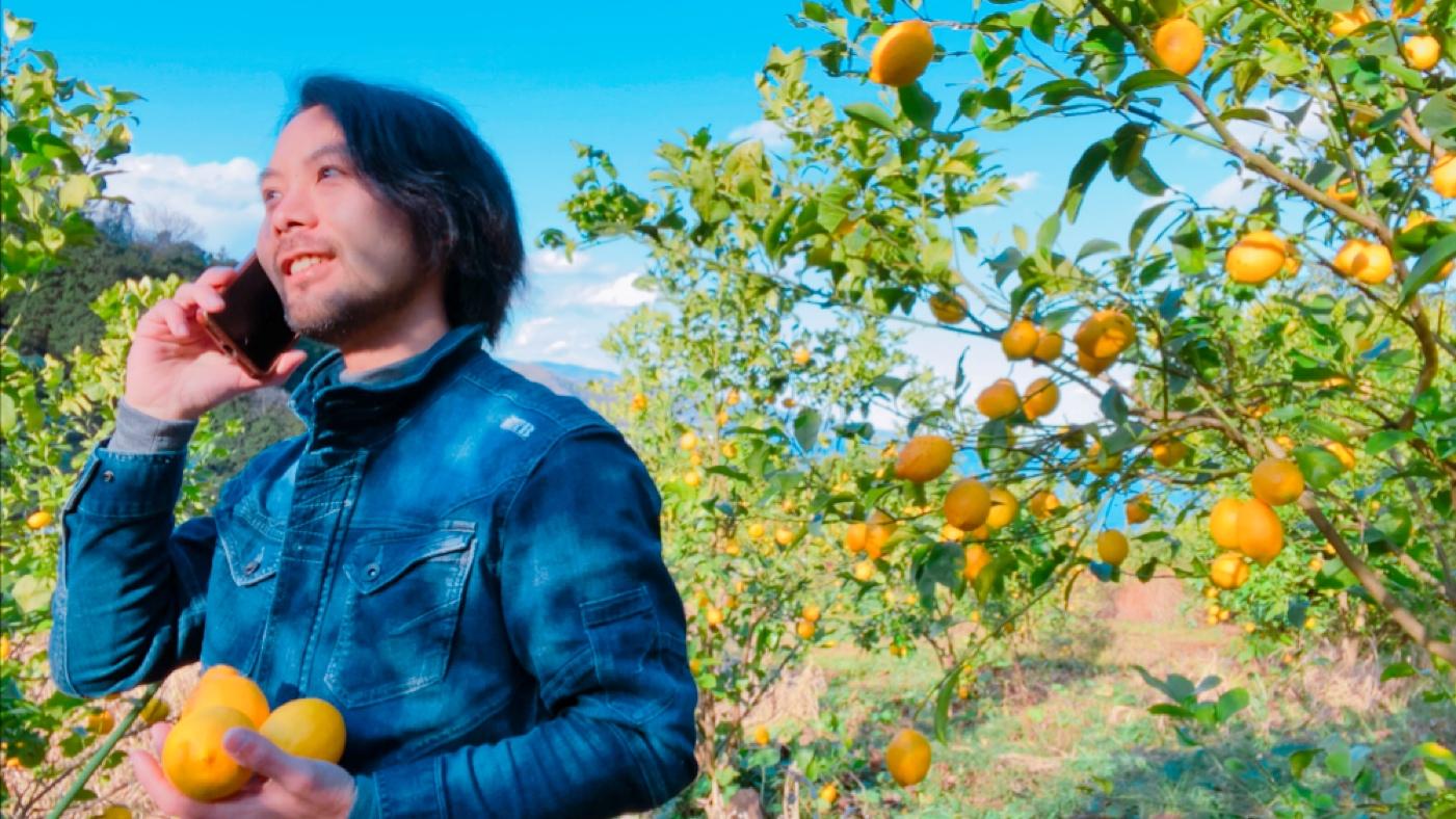 Damon de Farm